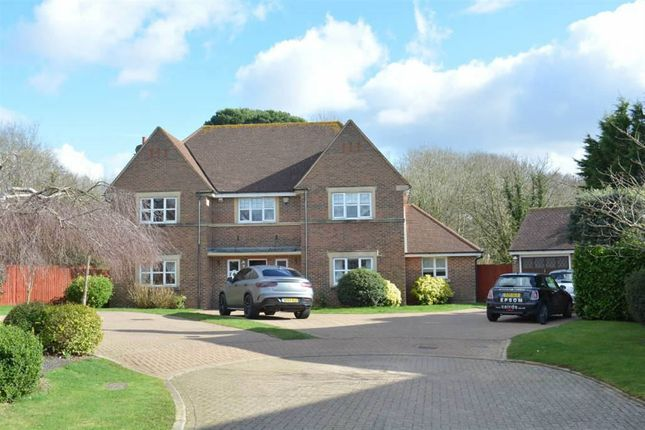 Thumbnail Detached house to rent in Heathside Place, Epsom