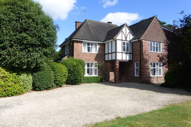 Thumbnail Detached house to rent in West Park, Yeovil