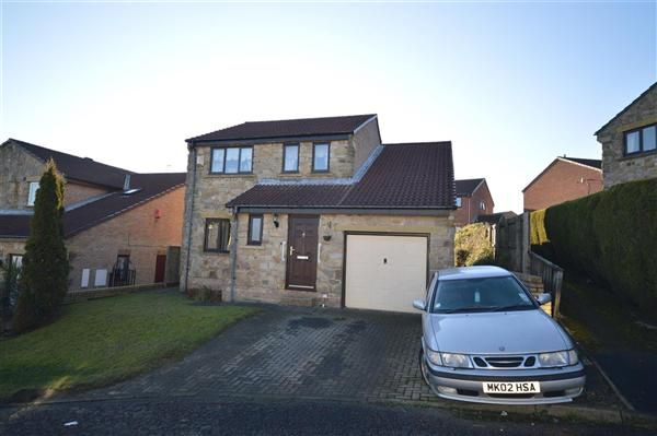 Thumbnail Detached house for sale in The Grange, Tanfield Lea, Stanley