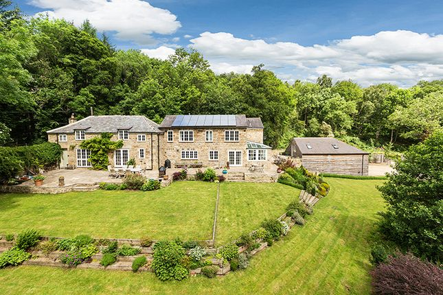 Thumbnail Detached house for sale in Dipton Mill Cottage, Dipton Mill Road, Hexham, Northumberland