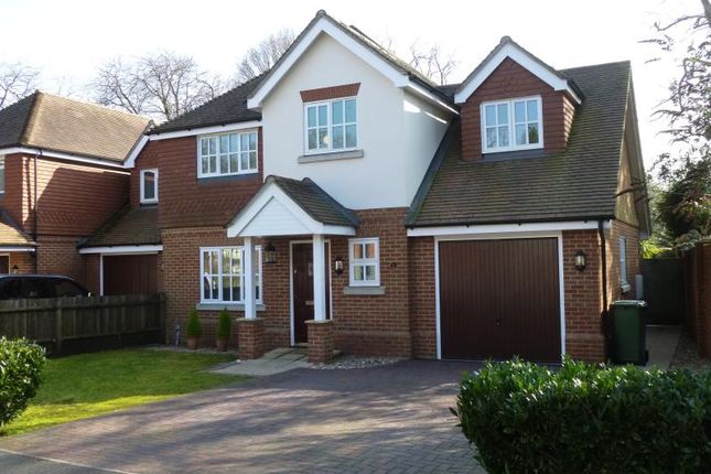 Thumbnail Detached house to rent in Canterbury Gardens, Farnborough, Hampshire