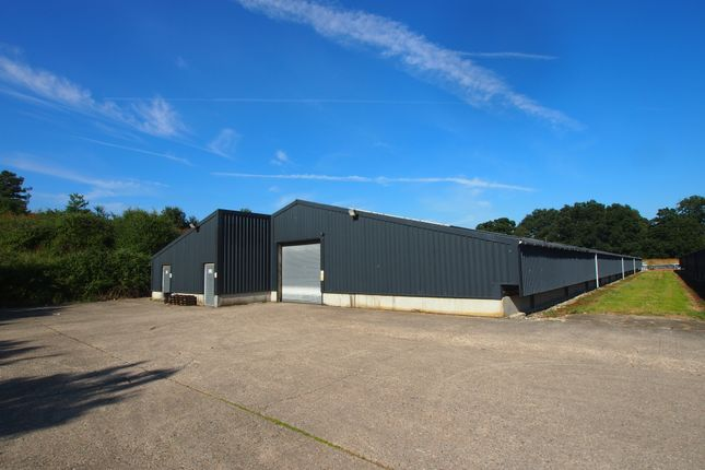 Thumbnail Warehouse to let in Blackgate Lane, Pulborough