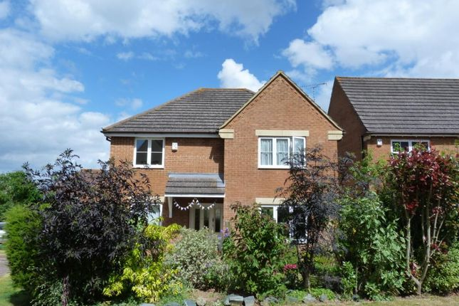 Thumbnail Detached house to rent in Poplar Drive, Yeovil, Somerset