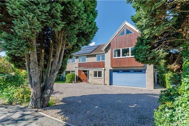 Thumbnail Detached house for sale in Porson Road, Trumpington, Cambridge