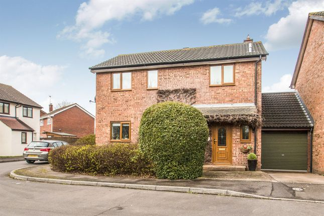 Thumbnail Link-detached house for sale in Larch Close, Taunton