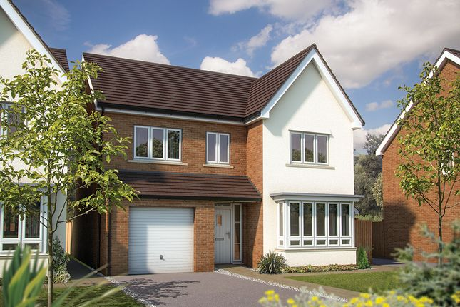 "Thumbnail Detached house for sale in ""The Alder"" at Mcnamara Street, Longhedge, Salisbury"