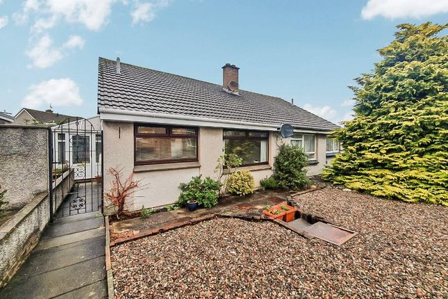 2 bed semi-detached bungalow to rent in Letham Place, St. Andrews KY16