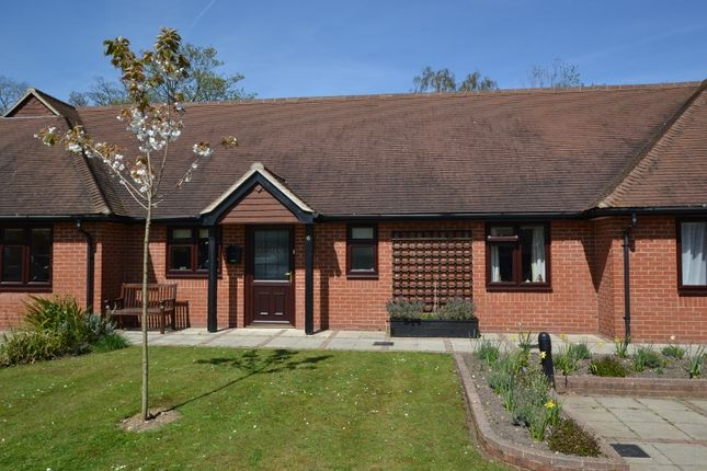 Thumbnail Terraced bungalow to rent in Burton Park Road, Petworth