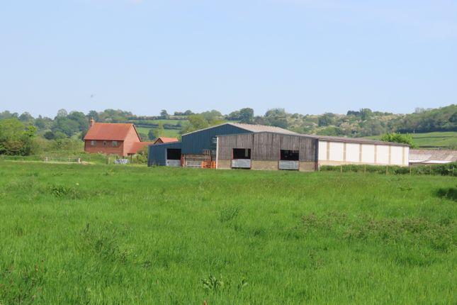 Thumbnail Farmhouse for sale in Great Ridgeway Farm Main Road, Christian Malford, Chippenham
