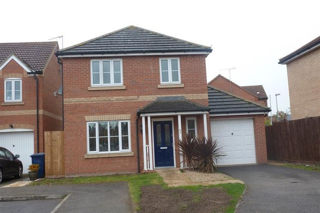 Thumbnail Detached house to rent in Penrose Gardens, Wisbech