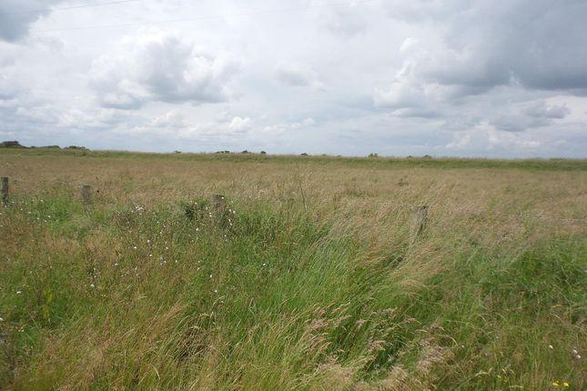Thumbnail Land for sale in Marsh Road, Fosdyke