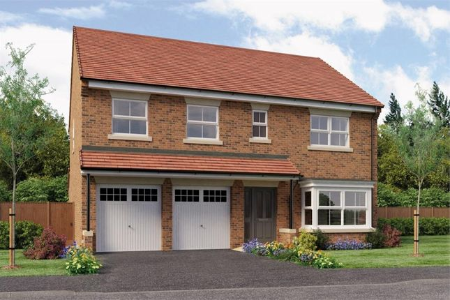 "Thumbnail Detached house for sale in ""The Warren"" at Otley Road, Killinghall, Harrogate"