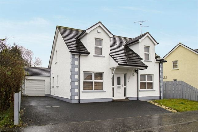 Thumbnail Detached house for sale in The Ferns, Armoy, Ballymoney, County Antrim