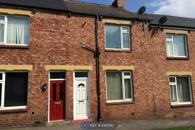 3 bed terraced house to rent in The Avenue, Pelton, Chester Le Street DH2