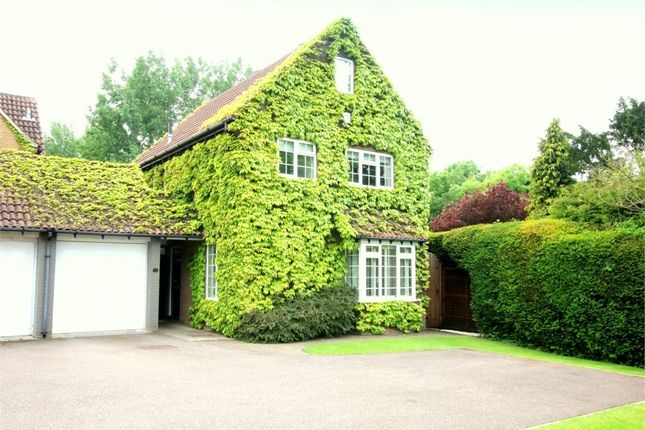 Thumbnail Detached house for sale in Vicarage Green, Thurleigh, Bedford