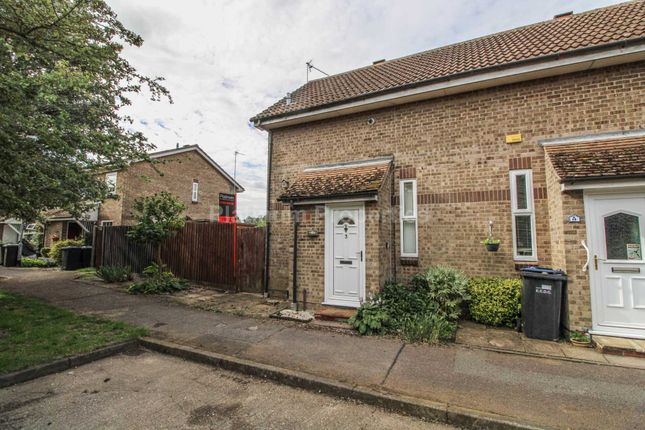Thumbnail Property to rent in Holly Walk, Ely