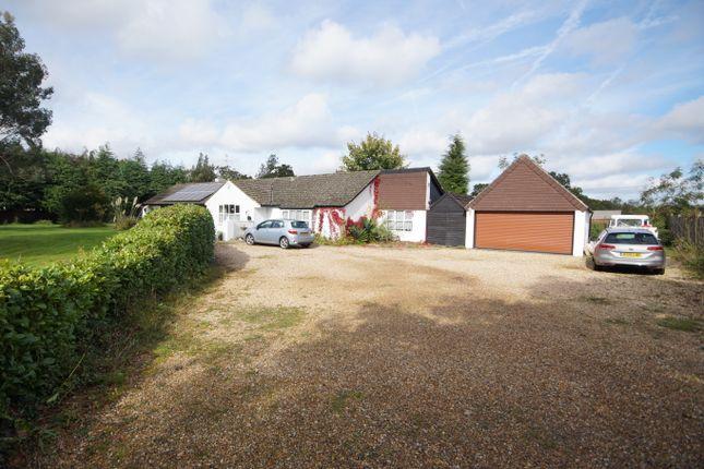Thumbnail Detached bungalow for sale in Burgh Hill Road, Bramshott