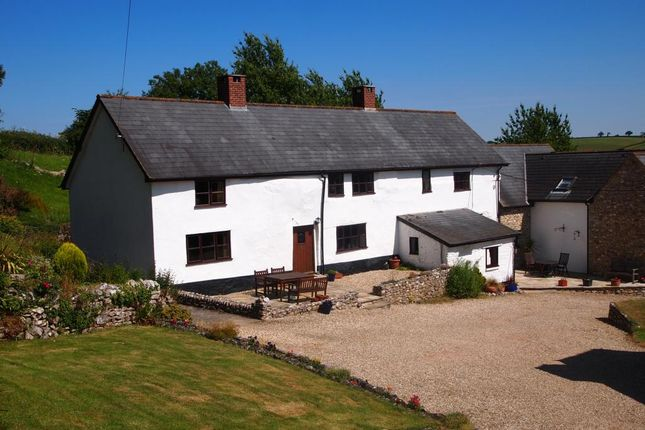 Thumbnail Property to rent in Shute, Axminster, Devon