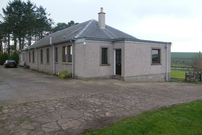 Thumbnail Semi-detached house to rent in Greenlaw, Duns, Scottish Borders