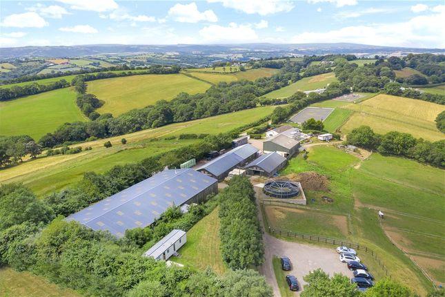 Thumbnail Equestrian property for sale in Whitestone, Exeter, Devon