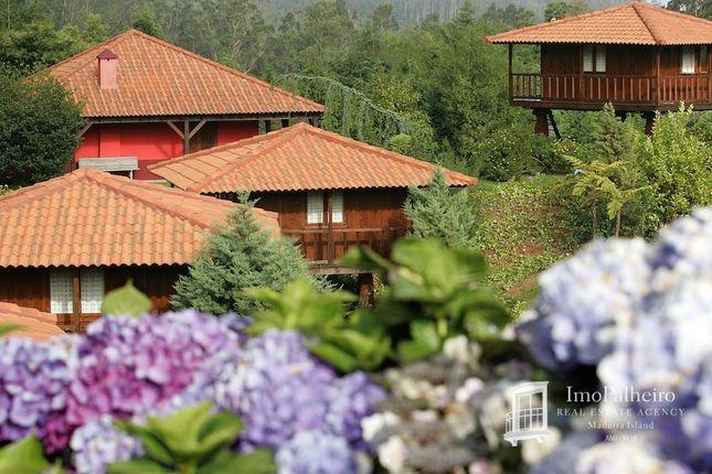 Thumbnail Finca for sale in Santo Da Serra, Santo António Da Serra, Santa Cruz, Madeira Islands, Portugal