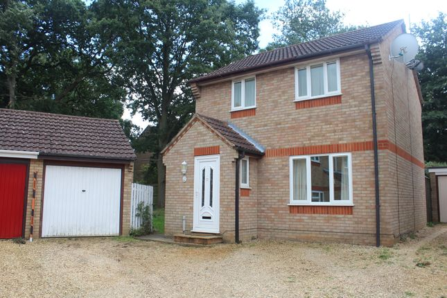 Thumbnail Detached house for sale in Horton Road, King's Lynn
