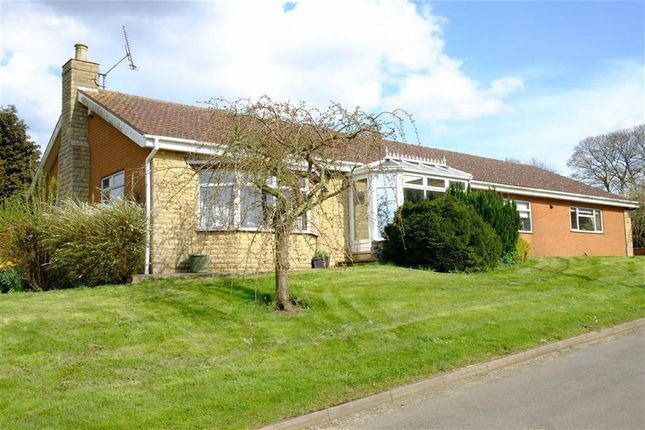 Thumbnail Bungalow for sale in Atterby Lane, Bishop Norton
