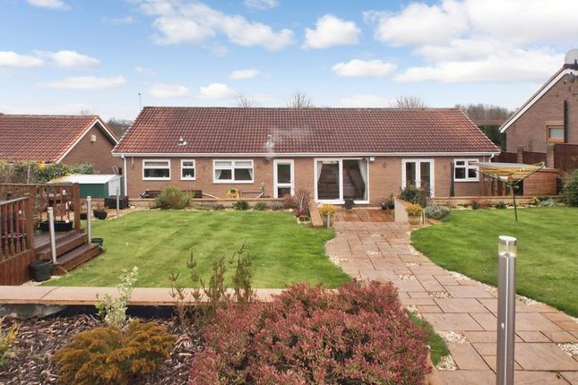 Thumbnail Bungalow for sale in Brancepeth Chare, Peterlee