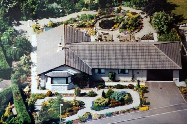 Thumbnail Detached bungalow for sale in Latch Gardens, Brechin