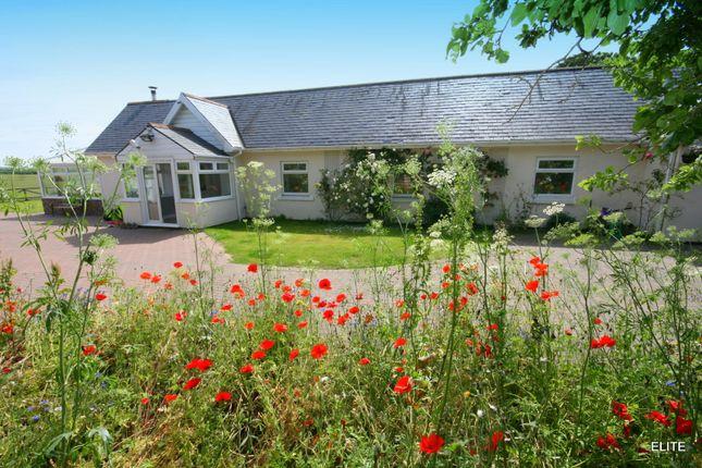 Thumbnail Detached bungalow for sale in West Rainton, Houghton Le Spring