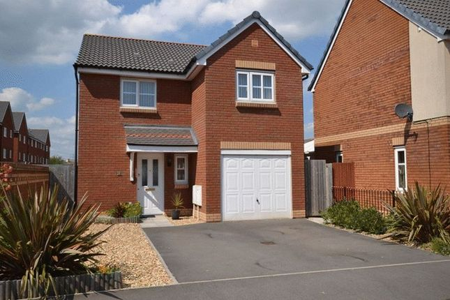 Thumbnail Property to rent in Amelia Avenue, Newport