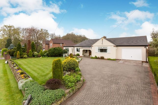 Thumbnail Bungalow for sale in Congleton Road North, Church Lawton, Stoke-On-Trent