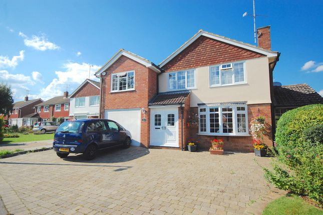 Thumbnail Detached house for sale in Plume Avenue, Maldon
