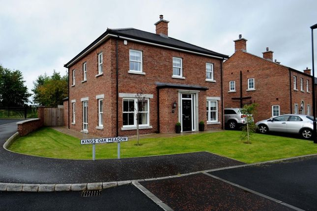 Thumbnail Detached house for sale in Kings Oak Meadow, Lisburn