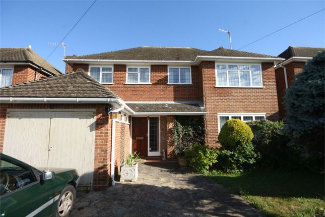 Thumbnail Detached house for sale in Hawkhurst Way, Bexhill-On-Sea