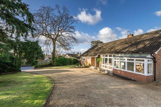 4 bed detached bungalow for sale in Raglan Road, Reigate, Surrey