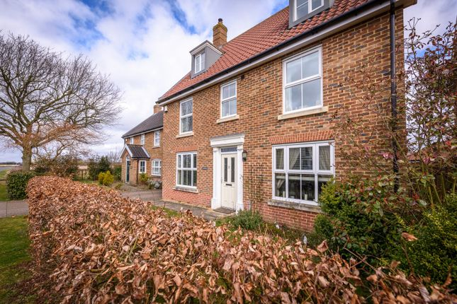 Thumbnail Detached house for sale in New Road, Tacolneston