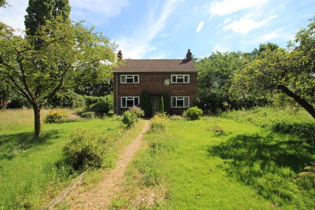 Thumbnail Detached house for sale in Green Lane, Boxted, Colchester