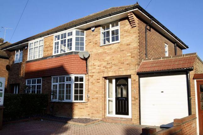 Thumbnail Semi-detached house to rent in Black Swan Lane, Luton