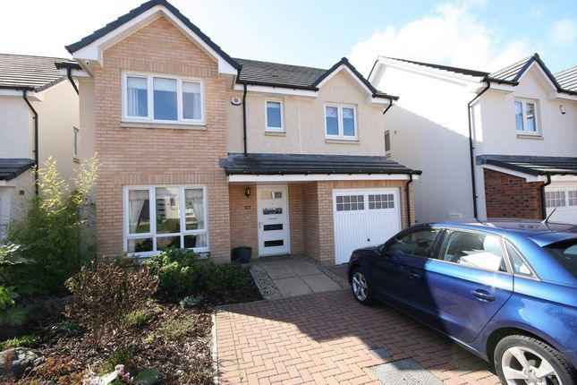 Thumbnail Detached house to rent in Maplewood Park, Edinburgh