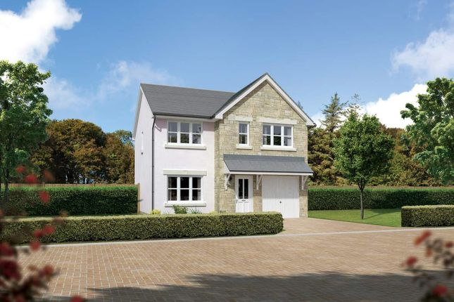 "Thumbnail Detached house for sale in ""Carlton"" at Cherrytree Gardens, Bishopton"