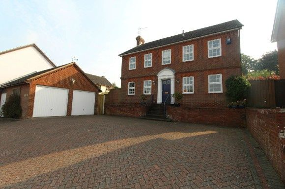 Thumbnail Detached house to rent in Pardoe Place, East, Ipswich