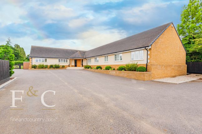 Thumbnail Detached bungalow for sale in Epping Road, Bumbles Green, Essex