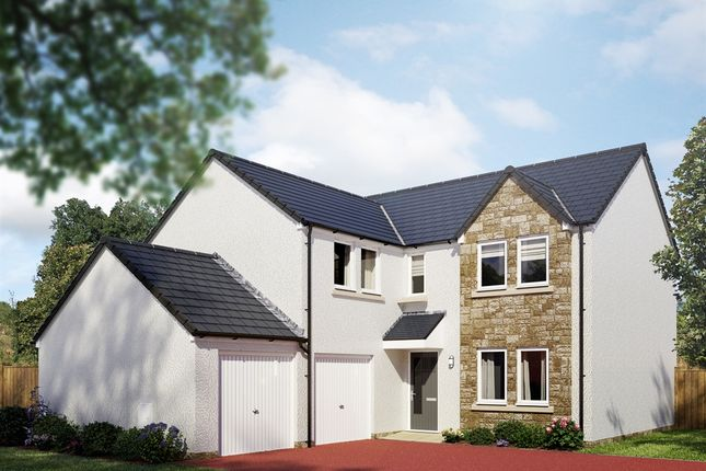 "Thumbnail Detached house for sale in ""The Trinity"" at Cotland Drive, Falkirk"