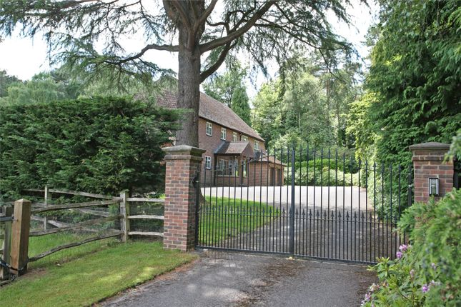 Thumbnail Detached house for sale in Tilford Road, Tilford, Farnham, Surrey