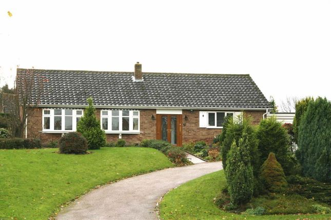 3 bed detached bungalow to rent in Braunston Road, Oakham