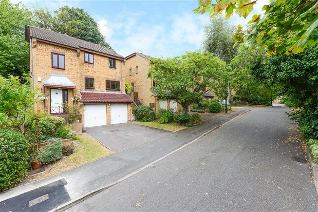 Thumbnail Property to rent in Kingswood Drive, London