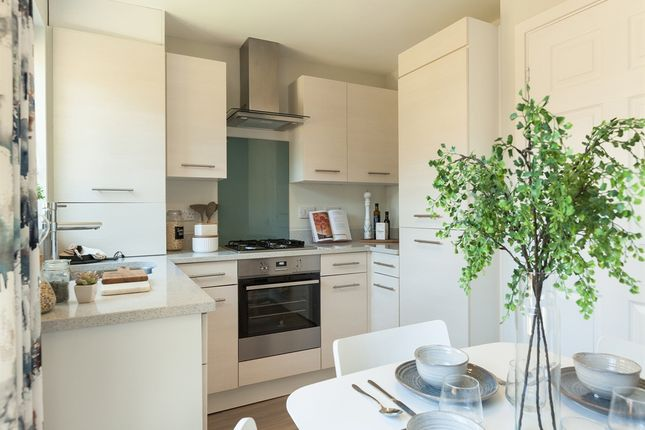 """Thumbnail Semi-detached house for sale in """"The Saunton"""" at Wilbury Close, Coate, Swindon"""