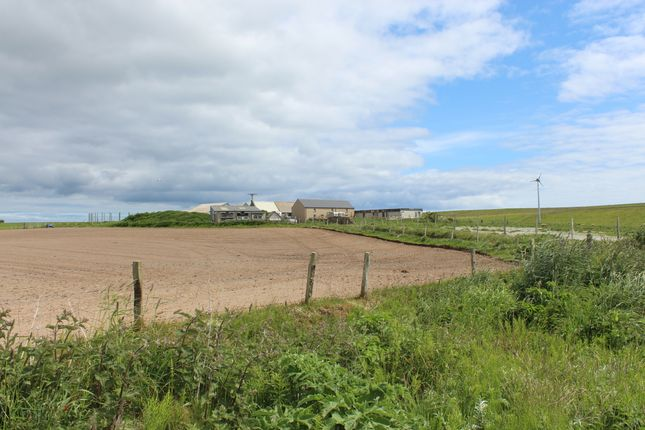 Thumbnail Detached house for sale in South Ronaldsay, Orkney