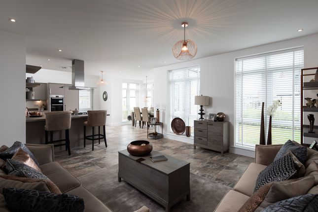 The Maple Showhome Open Plan Living